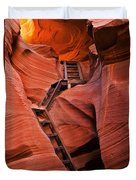 Jacob's Ladder Duvet Cover by Mike  Dawson