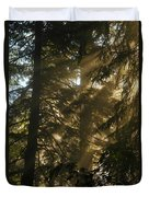 Knowing The Way Duvet Cover by Jeff Swan