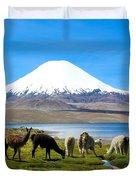 Lake Chungara Chilean Andes Duvet Cover by Kurt Van Wagner