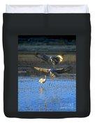 Landing Sandhill Cranes Duvet Cover by Steven Ralser