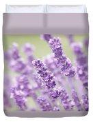 Lavender Dreams Duvet Cover by Kim Hojnacki