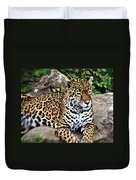 Leopard At Rest Duvet Cover by Marty Koch