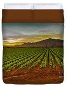 Lettuce Sunrise Duvet Cover by Robert Bales
