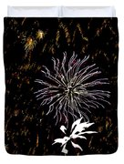 Lighting Up The Sky Duvet Cover by Aimee L Maher Photography and Art