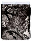 Lightning Tree  Duvet Cover by Trish Mistric