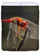 Little Red Dragon 2 Duvet Cover by Bill Caldwell -        ABeautifulSky Photography