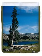 Lone Tree At Pass Duvet Cover by Kathy McClure