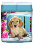 Long Eared Puppy In Front Of Blue Box Duvet Cover by Greg Cuddiford