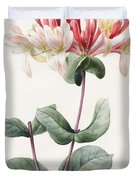 Lonicera Periclymenum  Duvet Cover by Louise D Orleans