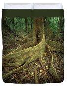 Lowland Tropical Rainforest Duvet Cover by Ferrero-Labat