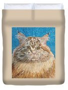 Maine Coon Cat Duvet Cover by Kathy Marrs Chandler