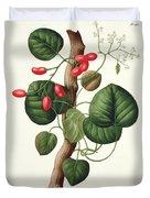 Menispermum Duvet Cover by LFJ Hoquart