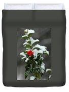 Merry Christmas Duvet Cover by Raymond Salani III