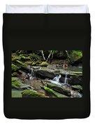 Mini Waterfalls Duvet Cover by Kaye Menner