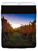 Morning At The Vineyard Duvet Cover by Bill Gallagher