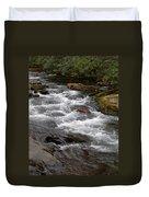 Mountain Stream Duvet Cover by Skip Willits