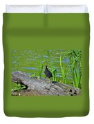 Mouthy Moorhen Duvet Cover by Al Powell Photography USA