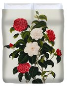 Myrtle Leaved Camellia Duvet Cover by Clara Maria Pope