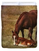 New Birth in Colorado Duvet Cover by Janice Rae Pariza