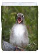 Newborn Arctic Tern Chick With Mouth Duvet Cover by Doug Lindstrand