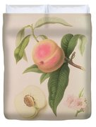 Noblesse Peach Duvet Cover by William Hooker