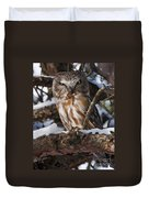 Northern Saw-whet Owl.. Duvet Cover by Nina Stavlund