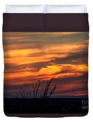 Ocotillo Sunset Duvet Cover by Robert Bales