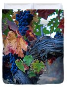 Old Vine Duvet Cover by Kathy Yates