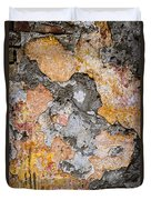 Old Wall Abstract Duvet Cover by Elena Elisseeva
