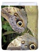 Owl Butterflies Duvet Cover by Bob Slitzan