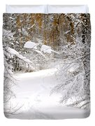 Path In Winter Forest Duvet Cover by Elena Elisseeva