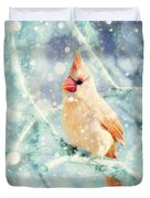 Peaches In The Snow Duvet Cover by Amy Tyler