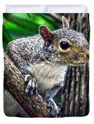 Peanut? Treat? Duvet Cover by Sandi OReilly