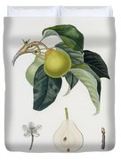 Pear Duvet Cover by Pierre Antoine Poiteau