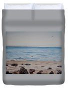 Pelicans At El Capitan Duvet Cover by Ian Donley