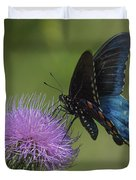 Pipevine Swallowtail Visiting Field Thistle Din158 Duvet Cover by Gerry Gantt
