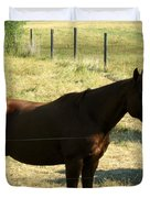 Prarie Stallion in the Shade Duvet Cover by Barbara Griffin