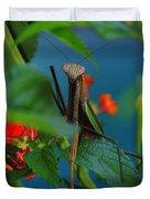 Praying Mantis Duvet Cover by Raymond Salani III