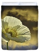 Prelude To Spring Duvet Cover by Lynn Bauer