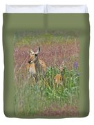 Pronghorn Doe And Fawn Duvet Cover by Karon Melillo DeVega