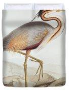 Purple Heron Duvet Cover by Edward Lear