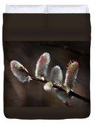 Pussy Willows Duvet Cover by John Haldane