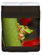 Red Eyed Leaf Frog Duvet Cover by Bob Hislop
