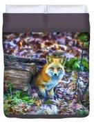 Red Fox At Home Duvet Cover by John Haldane