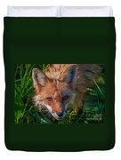 Red Fox Duvet Cover by Bianca Nadeau