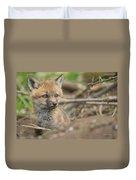 Red Fox Kit Duvet Cover by Everet Regal