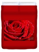 Red rose Duvet Cover by Elena Elisseeva