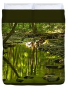 Reflections In Hells Hollow Creek Duvet Cover by Adam Jewell