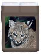 Reflective Bobcat Duvet Cover by John Haldane