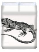 Reptile Duvet Cover by English School